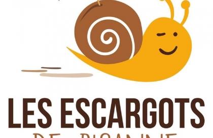 Les escargots de Bisanne